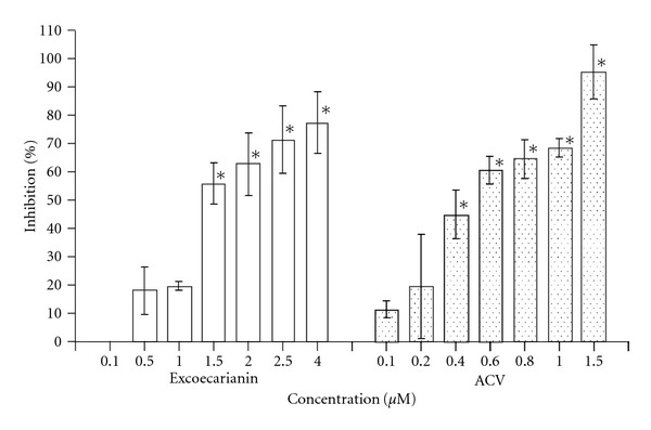 Inhibitory effect of excoecarianin (open bars) and ACV (dotted bars) against HSV-2 infection in Vero cell as determined by plaque reduction assay. Vero cells were incubated with 100 pfu of HSV-2 and different concentrations of excoecarianin or ACV. After 1 h, an overlay medium containing 1% methylcellulose was added. On Day 3 post-infection, the cell monolayer was stained with crystal violet and the virus plaques formed were counted. The percentage of inhibition was calculated by comparing the plaque number of compound-treated group to that of the untreated group. The concentrations of excoecarianin and ACV that inhibited 50% of HSV-2 infection (IC 50 ) were determined. Each bar represents the mean ± SD of three independent experiments. The asterisk indicates significant difference between test sample and solvent control ( P