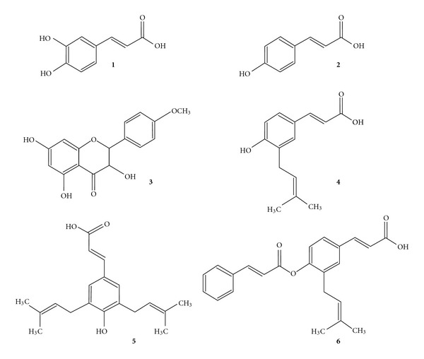 Structures of chemical constituents in the ethyl acetate extract of B. dracunculifolia . ( 1 ) caffeic acid; ( 2 ) p -coumaric acid; ( 3 ) aromadendrin-4- O -methyl ether; ( 4 ) 3-prenyl- p -coumaric acid (drupanin); ( 5 ) 3,5-diprenyl p -coumaric acid (artepillin C); ( 6 ) baccharin.
