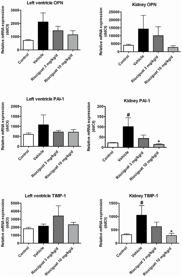 Effects of riociguat on mRNA expression of osteopontin (OPN), plasminogen activator inhibitor-1 (PAI-1) and tissue inhibitor of matrix metalloproteinase-1 (TIMP-1) in the left ventricle and the renal cortex in the vehicle (n = 7) - and riociguat-treated (3 or 10 mg/kg/d, n = 11 per group) Dahl/ss rats maintained on a high-salt diet. Healthy, age-matched animals were used as controls (n = 10). Data are mean±SEM; *p