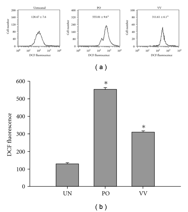 Intracellular ROS evaluation of PO and VV protein extract-treated SW480 cells. SW480 cells were exposed to PO and VV protein extracts (100 μ g mL −1 ) for 24 h. Production of intracellular ROS was detected by flow cytometry using DCFH-DA. The intracellular fluorescence of DCF was measured with a Becton-Dickinson FACScan flow cytometer. Data in each panel represent the DCF fluorescence intensity within the cells. The values shown are the means ± SD ( n = 5–8 of individual experiments). * P