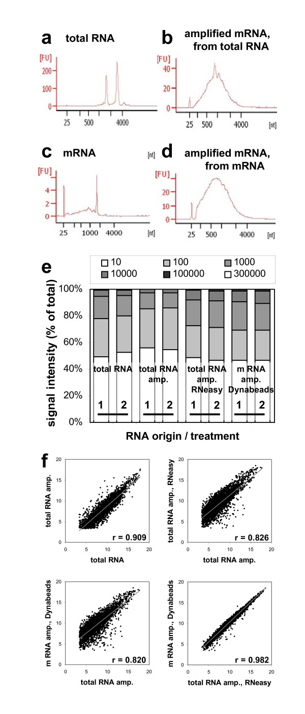 Transcript analysis . Closeness of expression signals obtained after microarray hybridisation of conventionally extracted total RNA and amplified RNA samples of conventional, column-based and bead-based extraction methods. ( a c ) Electropherograms reflecting quality of total RNA, isolated with RNeasy ® (a) and mRNA, isolated with Dynabeads ® (c) from a 20 μm seed cryosection (43. DAF). ( b d ) Electropherograms of mRNA from the same samples (a/c) after 2 rounds of amplification. ( e ) Portions of signal intensities obtained from each hybridisation and divided into six groups. Y-axis represent % of observation. ( f ) Scatterplots comparing log 2 -transformed means of expression signals from the different sample treatments. Means are filtered against low signal intensities (≤ 10) and high coefficients of variation (≥ 20%).