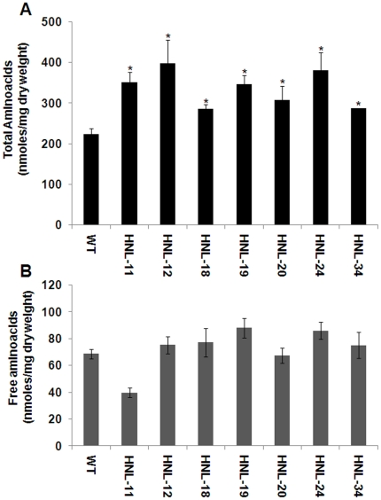 Total and free amino acid content of transgenic and wild-type cassava roots. (A) Measurement of total protein hydrolyzed and free amino acid concentrations in transgenic and wild-type roots. Samples were hydrolyzed with HCl and subjected to ACQUITY UPLC® System. Data are presented as nmoles/mg total dry weight. Error bars indicate SE of the mean of two biological replicates. The asterisk (*) indicates statistically significant differences between wild-type and transgenics, determined by Student's t-test, with P