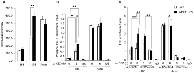 NFAT1 deficient Th2 cells have more permissive chromatin structure at the IL-4 promoter. (A) For chromatin accessibility analysis, Th2 cells differentiated in vitro from WT or NFAT1 KO mice were stimulated with anti-CD3 for 6 h. Nuclei isolated from each group and were incubated with or without 50 U Mnase. Fifty nanograms of genomic DNA from each treatment were subjected to real-time PCR analysis with indicated primer sets covering IL-4 promoter. The Ct values generated were converted to DNA concentrations by using the standard curve. MNase accessibility was expressed as a relative value of undigested genomic DNA and plotted for each primer set. Graphs depict the PCR products from digested samples normalized to the PCR products from undigested samples and show mean ± SEM, n = 3 and ** P