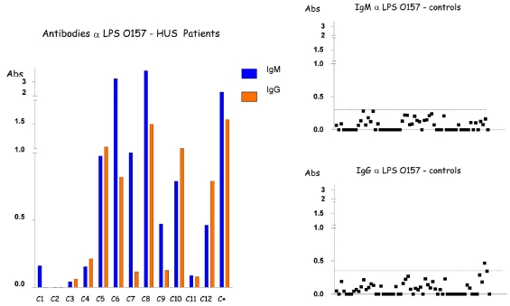 Detection of IgM and IgG antibodies against LPS O157 in the serum from patients with HUS and controls by ELISA. Serum samples were diluted 1:500 in PBS-Tween, and absorbance values (Abs) were measured at 492 nm.