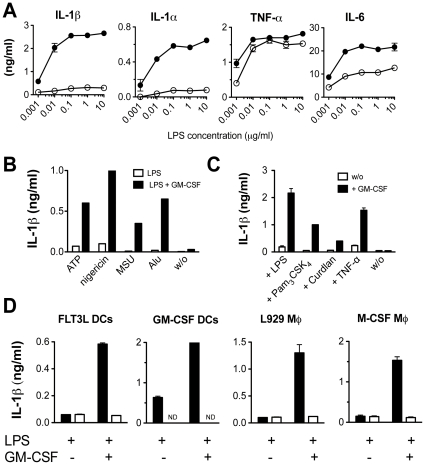 GM-CSF boosts LPS-induced IL-1 secretion. (A) CD11b + fraction of FLT3L derived DCs was stimulated 24 h with a wide range of different LPS concentrations (0.001–10 µg/ml) in absence (white circles) or presence of 5 ng/ml GM-CSF (black circles). 5 mM ATP was added as a danger signal. Released IL-1β, IL-1α, TNF-α and IL-6 were measured in the culture supernatants by standard ELISA and each value represents the mean of triplicates +/− SD. (B) CD11b + fraction of FLT3L generated DCs was primed for 24 h with 100 ng/ml LPS with (back bars) or without (white bars) 5 ng/ml GM-CSF and stimulated with different danger signals (5 mM ATP, 1 µM nigericin, 100 µg/ml MSU, 200 µg/ml Alu). Each bar represents the mean of triplicates +/− SD. (C) CD11b + fraction of FLT3L generated DCs was primed with TLR agonists (100 ng/ml LPS and Pam 3 CSK 4 ), Dectin agonist, Curdlan (100 µg/ml) and pro-inflammatory cytokine TNF-α (100 ng/ml) in absence (white bars) or presence (back bars) of 5 ng/ml GM-CSF and stimulated subsequently with ATP. Each bar represents the mean of triplicates +/− SD. (D) GM-CSF derived BM DCs, M-CSF-derived BM MØ as well as L929-derived BM MØ were compared to the CD11b + fraction of FLT3L-derived DCs for their capacity to secrete IL-1β upon 24 h LPS stimulation (100 ng/ml) in absence or in presence of GM-CSF (5 ng/ml). ATP was added as danger signal. Both, WT (black bars) and GM-CSF R−/− cells (white bars) were tested. Each bar represents the mean of triplicates +/− SD. All results are representative of at least two independent experiments.