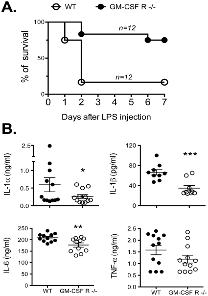 GM-CSF R−/− mice survive LPS-induced septic shock. (A) Survival of WT and GM-CSFR−/− mice ( n = 12 each group) injected i.p. with 50 µg/g body weight LPS. (B) WT and GM-CSFR−/− mice were bled from the retro-orbital plexus 3 h after LPS treatment. Pro-inflammatory cytokines such as IL-1α, IL-1β, IL-6 and TNF-α were measured in the serum by ELISA. The data represent the mean +/− SD of three pooled independent experiments. *