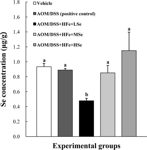 Hepatic Se levels in mice fed the high Fe diet with different Se levels. The Se concentration was determined using an inductively coupled plasma mass spectrophotometer. The hepatic Se levels were dependent on dietary Se levels. AOM: azoxymethane, DSS: dextran sodium sulfate, HFe: high-Fe diet (450 ppm), LSe: low-Se diet (0.02 ppm), MSe: medium-Se diet (0.1 ppm), HSe: high-Se diet (0.5 ppm). Data were represented as mean±SE. ab Means not sharing common superscript letters are significantly different at P