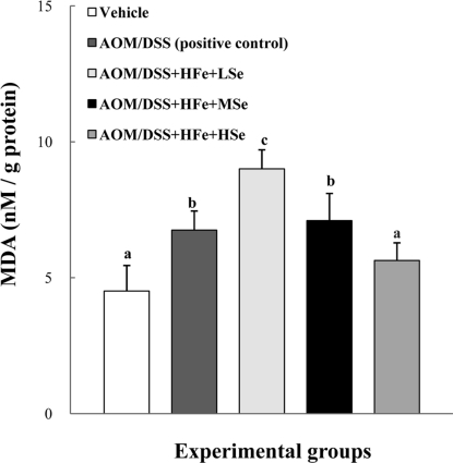 Effect of Se on hepatic MDA levels in mice fed the high Fe diet with different Se levels. The MDA levels were decreased by dietary Se in a dose-dependent manner. AOM: azoxymethane, DSS: dextran sodium sulfate, HFe: high-Fe diet (450 ppm), LSe: low-Se diet (0.02 ppm), MSe: medium-Se diet (0.1 ppm), HSe: high-Se diet (0.5 ppm). Data were represented as mean±SE. abcd Means not sharing common superscript letters are significantly different at P