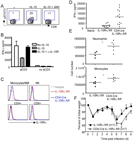 Autocrine regulation of pulmonary inflammation by effector T cell-derived IL-10 during RSV infection. (A, B). BALB/c mice were infected with RSV. At d7 p.i., Lung CD8 + cells were purified and stimulated as indicated in vitro . (A) CD8 + T cells were stimulated with rIL-10 in the absence or presence of JAK inhibitor. STAT3 phophorylation was determined by ICS. (B) CD8 + T cells were left un-stimulated or stimulated with plate-bound a-CD3 overnight in the absence or presence of rIL-10 or rIL-10 plus α-IL-10R. IFN-γ release to the medium was determined by ELISA. (C – F) IL-10Rα fl/fl mice or CD4-Cre + IL-10Rα fl/fl mice were infected with RSV. (C) The expression of IL-10Rα in lung monocytes, NK cells, CD4 + and CD8 + T cells at d6 post infection was determined by flow cytometry. (D) IFN-γ levels in the BALF were determined by ELISA. P value was determined by unpaired two-tailed Student t test. * indicates P