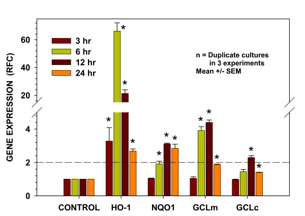 Treatment of cells with the mixed oil preparation increases expression of oxidant-protective pathways with differing activation kinetics . Time-courses of expression of antioxidant genes HO-1 , NQO1 , GCLm , and GCLc in cells of the BEAS-2B human bronchial epithelial line at designated times following the 15 min treatment period. Data are presented as fold change from time-matched soy oil controls after normalization to the expression of actin. Presented are results from three separate experiments. The dashed line indicates the 2-fold level of increased expression as a reference for potential biological significance. Results are expressed as mean ± SEM. * indicates significantly different from time-matched soy oil controls (P