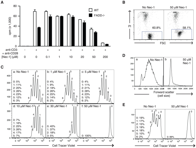 High doses of Nec-1 inhibit T cell proliferation. (A) Low dose Nec-1 inhibits TCR-induced necrosis, but high dose Nec-1 inhibits T cell proliferation. Purified T cells from wild type or FADD −/− mice were stimulated with plate-bound anti-CD3, anti-CD28 and increasing doses of Nec-1. Three days later, cell proliferation was measured by incorporation of [ 3 H]-thymidine. Results shown are mean ± SEM. (B) Nec-1 did not compromised T cell viability. Naïve CD3 + T cells were purified from the spleen of wild type C57BL/6 mice and incubated at 37°C for 24 hours in the presence or absence of 50 µM Nec-1. Viability of the cells was determined by flow cytometry using propidium iodide (PI) uptake as an indication of cell death. Note that Nec-1 increased the baseline fluorescence of the T cells. (C) Nec-1 inhibits T cell division. Purified CD3 + primary T cells were labeled with <t>CellTracer</t> Violet fluorescent dye and stimulated with 1 µg/ml plate-bound anti-CD3 and 200 ng/ml anti-CD28 antibodies. Three days later, cell division was analyzed using a BD LSR2 flow cytometer. The numbers above each peak represent the number of cell division the cells had undergone. The numbers on the left represent the percentages of cells in each peak. (D) Nec-1 inhibits T cell blast formation. Purified CD3 + T cells were similarly activated as in (C). Three days later, formation of T cell blast as measured by forward scatter was determined by flow cytometry. (E) FADD −/− RIP1 −/− DKO T cells stimulated with plate-bound anti-CD3 and anti-CD28 antibodies in the absence or presence of Nec-1 were measured for cell proliferation as in (C).