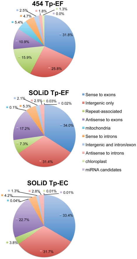 Summary of the small RNA sequence distribution in the T. pseudonana genome for each library.