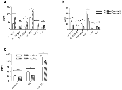 Cytokines in sera and in vitro splenocyte cultures. Serum cytokine concentrations measured at days 34 (A) and 91 (B) in TLR4 negative and TLR4 positive groups of mice. Significantly higher IL-12p70, TNF alpha, MCP-1 and IL-10 concentrations in TLR4 negative groups of mice at day 34 after immunization, while at day 91 IL-12p40, TNF alpha and MCP-1 were higher in TLR4 positive mice. (C) Interleukin17 concentrations are reduced in TLR4 deficient in vitro spleen cell cultures after 48 hours in the presence of type II collagen (100 ug/ml) or anti-CD3 antibodies (1 ug/ml)(*p
