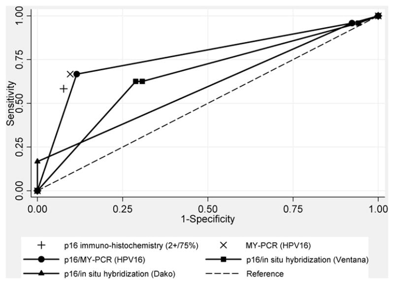 Receiver operating characteristic curves for head and neck squamous cell carcinomas by combined p16 immuno-histochemistry and HPV DNA testing by in-situ hybridization using the INFORM ® HPV-III Fam16(B) (Ventana, CA) and HPV16/18 <t>biotinylated</t> GenPoint ™ (Dako, CA) probes, or by MY-PCR, compared to HPV16 E6/E7 RT-PCR. Non-parametric receiver operating characteristic curves shown for combined test results with p16 immuno-histochemistry (assuming a 1+/≥10% cut-off) stratified by HPV Ventana in-situ hybridization (-■-), Dako in-situ hybridization (-▲-), or MY-PCR (-●-) results. Solitary markers shown reflect single test performance statistics for p16 IHC (assuming a 2+/≥75% cut-off) ( + ) and MY-PCR for HPV16 ( X ) alone. The dashed line indicates a reference test threshold with area under the receiver operating characteristic curve of 0.5.