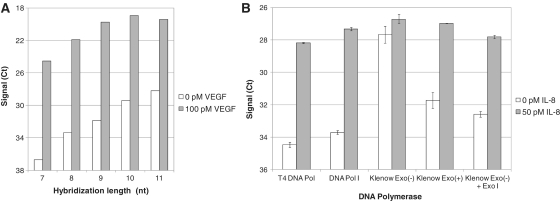 Exonuclease activity and hybridization length affects assay sensitivity. (A) VEGF assays were designed with different lengths of the hybridization site and compared with respect to sensitivity. A 9-nt hybridization site was found to give the best signal-to-noise levels and was selected for further studies. ( B ) Different DNA polymerases were tested with regards to their ability to generate good sensitivity in an IL-8-specific assay. T4 DNA polymerase I, DNA polymerase I and Klenow fragment exo + all possess a 3′→5′ exonuclease activity and performed well in the IL-8 detection. Klenow fragment exo − , on the other hand, generated a background signal that was almost at the level of the antigen-induced signal. When exogenous <t>Exonuclease</t> I was added to the reaction, the signal-to-noise level was restored.