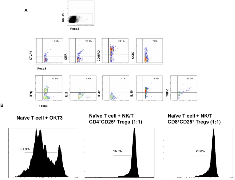 The biological characteristics and function of Foxp3 + Tregs subset. A. The flow cytometer profiles are representatives from the stainings for CTLA, GITR, CD45RO, CCR7, IFNγ, IL-2, IL-17, IL-10 and TGFβ in Foxp3 + Treg subset. B. The suppressive ability of CD4 + Tregs and CD8 + Tregs to naïve CD4 + T cells in vitro was measured by the T cell proliferation experiment. CSFE-labeled naïve CD4 + T cells were alone or co-cultured with CD8 + Tregs cells at ratio of 1:1 in the in complete RPMI1640 medium without IL-2 in OKT3-coated 96-well plate for 5 days and analyzed by FACS detection.