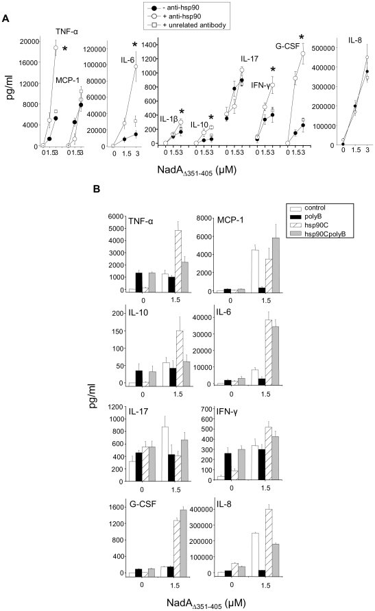 Anti-hsp90 antibodies increase NadA Δ351–405 monocyte stimulation in a polymixin B insensitive-way. A) Cells were treated with NadA Δ351–405 in the absence (black circles) or in the presence (open circles) of purified rabbit <t>polyclonal</t> antibodies directed to the COOH terminal domain of hsp90. Open squares refers to cells incubated with NadA Δ351–405 in the presence of purified rabbit polyclonal antibodies from non immunized animals. The indicated cytokines/chemokines were analyzed in the extracellular medium by BioPlex suspension arrays. Data are the mean from a representative experiment out of four run in triplicate. Bars are +/− SE. Asterisk indicates signals significantly different (p