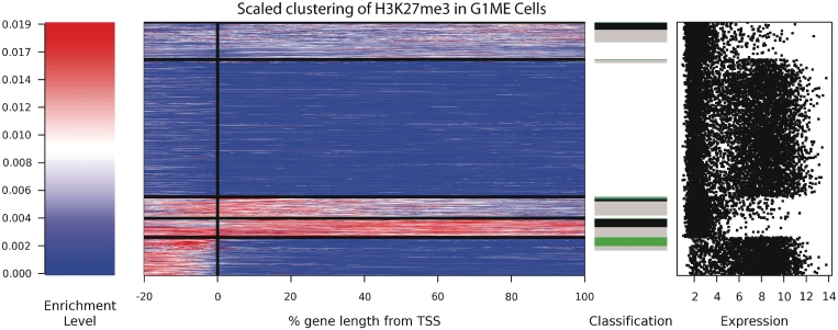 K -means clustering of genic H3K27me3 profiles in G1ME cells. The signal intensity is shown as a spectrogram, with red reflecting a high enrichment signal and blue reflecting no signal. All genes were scaled to have the same length, and position relative to the TSS is shown in percentage terms. Genes were sorted first by cluster, then by classification (black: broad; green: promoter; blue: TSS; grey: marked but unclassified). The expression level of all genes is shown on the far right. Additional cluster profiles are provided for the other cell types ( Supplementary Figure S8 ).