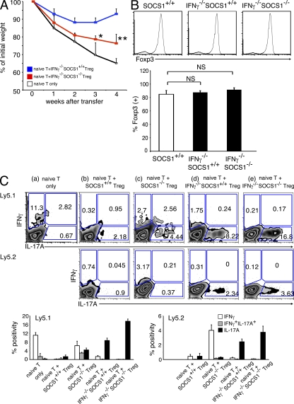 Ifnγ −/− Socs1 −/− T reg cells fail to suppress colitis in vivo. (A and B) 2 × 10 5 Ly5.2 Ifnγ −/− Socs1 +/+ or Ly5.2 Ifnγ −/− Socs1 −/− T reg cells were cotransferred with 4 × 10 5 Ly5.1 naive T cells into Rag2 −/− mice. 4 wk after transfer, recipient Rag2 −/− mice were analyzed. (A) Body weight changes. (B) Flow cytometric analysis of Foxp3 expression on Ly5.2 + CD3 + CD4 + T cells from the LN in Rag2 −/− mice (percentage of Foxp3 + indicated in bar graph). (C) Flow cytometric analysis of IFN-γ and IL-17A on Ly5.1 + CD3 + CD4 + cells (top) and Ly5.2 + CD3 + CD4 + T cells (middle) from the LN in recipient mice (percent positivity, bottom). (A–C) Data are representative of three independent experiments (*, P