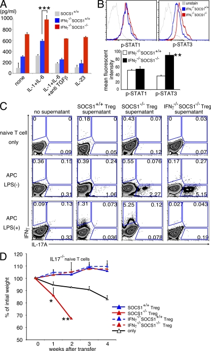 exFoxp3 cells instruct differentiation of naive T cells to Th1 and Th17 in vitro. (A) 10 5 Socs1 +/+ , Ifnγ −/− Socs1 +/+ , or Ifnγ −/− Socs1 −/− T reg cells/well were stimulated with anti-CD3/anti-CD28 beads, 10 ng/ml IL-2, and the indicated cytokines, and IL-17A was measured by ELISA. Data are representative of five independent experiments (***, P