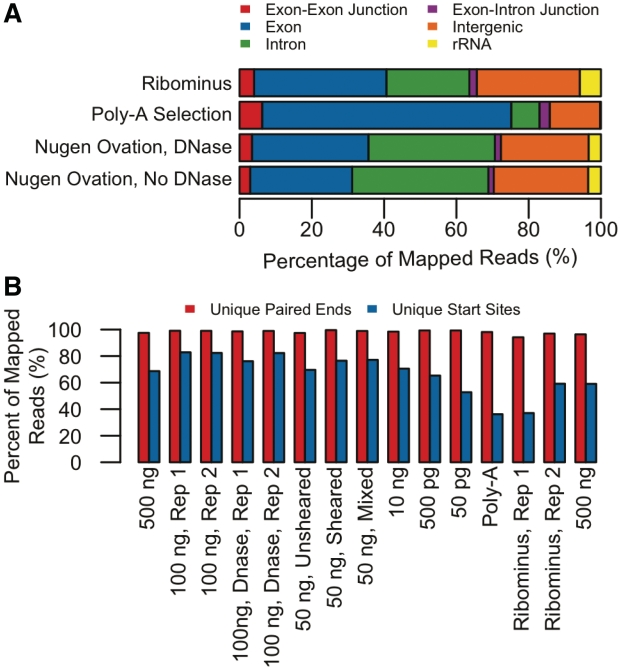 ( A ) Comparison of average mapping statistics of transcriptomic content among three datasets using 50 bp reads from Genome Analyzer IIx (Illumina, Inc.): cDNA libraries made from single RNA samples of mouse testis tissue in which mRNA was enriched from total RNA either by (i) TruSeq™ poly-A selection or by (ii) RiboMinus™ rRNA depletion and (iii) cDNA library in which cDNA was synthesized directly from total RNA (DNase treated and left untreated) using the Ovation® RNA-Seq system. ( B ) Complexity of libraries (percent of unique start sites, unique pairs out of total mapped reads): cDNA libraries of TruSeq™ poly-A selection, RiboMinus™ rRNA depletion and Ovation® RNA-seq amplification system (different input amounts of total RNA). The sample prepared using the Ovation® RNA-Seq system provided slightly higher percentage of unique start sites.