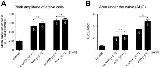 Agonist (α,β-methylene ATP; meATP) induced intracellular calcium response in sMF. ( A ) Mean amplitude of sMF evoked by α,β-methylene ATP at 1pm and 100 µM was significantly increased compare to control experiment, while there is no significant difference compared to ATP induced effect. Data are expressed as mean (SEM; N = 2). *p