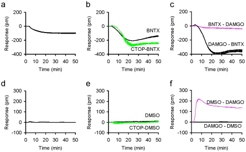 The DMR characteristics of BNTX and the negative control (0.1% DMSO). (a) The BNTX DMR in HEK-293 cells; (b) the BNTX DMR in the buffer treated (BNTX) and CTOP pretreated (CTOP – BNTX) HEK-MOR cells; and (c) the DAMGO DMR in the BNTX pretreated cells (BNTX – DAMGO) in comparison with the BNTX DMR in the DAMGO pretreated cells (DAMGO – BNTX); (d) the DMR induced by DMSO in HEK293; (e) the DMSO DMR in HEK-MOR or the CTOP pretreated HEK-MOR cells; (f) the DAMGO DMR after pretreatment with DMSO (DMSO – DAMGO) and the DMSO DMR after pretreatment with DAMGO (DAMGO –DMSO) in HEK-MOR cells. Each curve represents the average of duplicates.