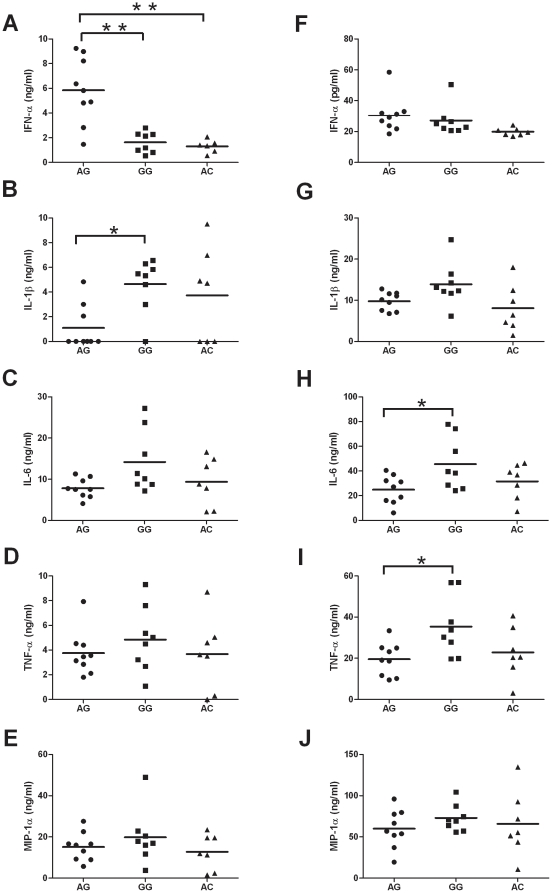Ex vivo cytokines production upon TLR7 or TLR8 agonist stimulation during whole blood culture. Fresh whole blood specimens from male volunteers were stimulated with TLR7 agonist (3M-001) (A–E) or TLR8 agonist (3M-002) (F–J) for 12 hr. The concentrations of IFN-α, IL-1β, IL-6, TNF-α, and <t>MIP-1α</t> concentrations in the supernatant were measured by high sensitive IFN-α ELISA and Luminex100 system. Each dot represents an individual, (•) represent individuals with TLR7 IVS2-151A/TLR8 -129G genotype, (▪) represent individuals with TLR7 IVS2-151G/TLR8 -129G genotype and (▴) represent those with TLR7 IVS2-151A/TLR8 -129C genotype. The horizontal bars represent mean value.