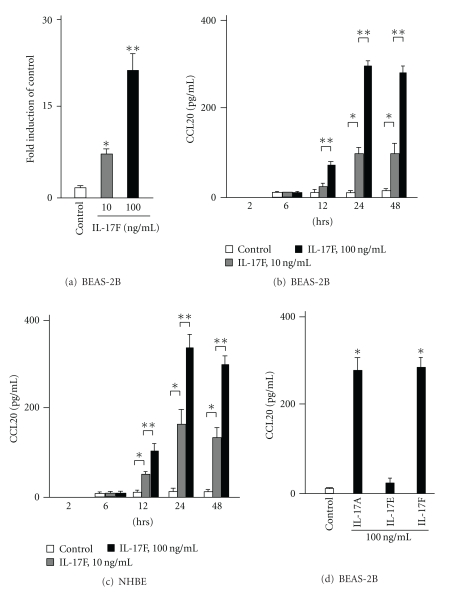 The expression of CCL20 gene and protein by IL-17F in bronchial epithelial cells. (a) CCL20 gene expression by real-time PCR in BEAS-2B cells. Real-time PCR was performed as described in Materials and Methods. BEAS-2B cells were stimulated with IL-17F for 4 hrs ( n = 6). (c) CCL20 protein levels in supernatants in BEAS-2B cells. ELISA was performed ( n = 6). (d) CCL20 protein levels in supernatants in NHBEs ( n = 6). * P