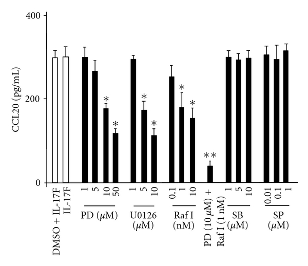 Effect of PD98059 (PD), U0126, Raf1 kinase inhibitor I (Raf I), SB202190 (SB), and SP600125 (SP) on CCL20 protein expression in BEAS-2Bs. The cells were pretreated for 1 hr as indicated before the 24-hr stimulation of IL-17F, and then CCL20 protein levels in supernatants were measured by ELISA. The values are expressed as means ± SEM ( n = 6). * P
