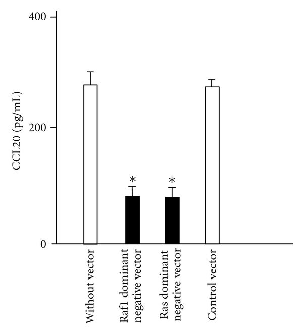 Effect of overexpression of dominant-negative mutants Raf1 and Ras on CCL20 protein expression in BEAS-2B cells. The cells overexpressing dominant-negative mutants were stimulated with IL-17F for 24 hrs, and CCL20 protein levels in supernatants were measured by ELISA. The values are expressed as means ± SEM ( n = 6). * P