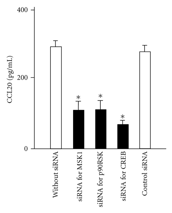 Effect of siRNA for p90RSK, MSK1 and CREB on IL-17F-induced CCL20 expression. BEAS-2B cells transfected with siRNAs as indicated were stimulated with IL-17F for 24 hrs, and then CCL20 protein levels in supernatants were measured by ELISA. The values are expressed as mean s ± SEM ( n = 6). * P