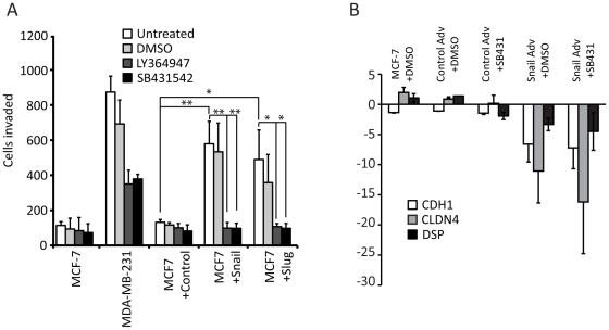 Treatment with a TGF-beta inhibitor reduces the migratory response to Snail and Slug. (A) Cell migration assay using MDA-MB-231, uninfected MCF-7 cells, and MCF-7 cells infected with control, Snail or Slug adenoviruses (white bars), treated with DMSO (light grey bars) or with 10 µM final of the TGF-beta inhibitors <t>LY364947</t> (dark grey bars) or SB431542 (black bars) for 2 days. The X-axis represents the total number of cells in 10 fields. The data represents the average of three independent biological replicates (* T-test p-value ≤0.05, **T-test p-value ≤0.01). (B) Addition of TGF-beta inhibitor does not affect repression of cell junction molecules CDH1, DSP and CLDN4. MCF-7 cells were untreated or treated with control or Snail adenovirus, and with DMSO vehicle or SB431542 for 2 days. RNA was isolated and RT-PCR of cDNA with real-time quantitation was performed following normalization to GAPDH, and MCF-7 Day 0. The data represents the average of three independent biological replicates.