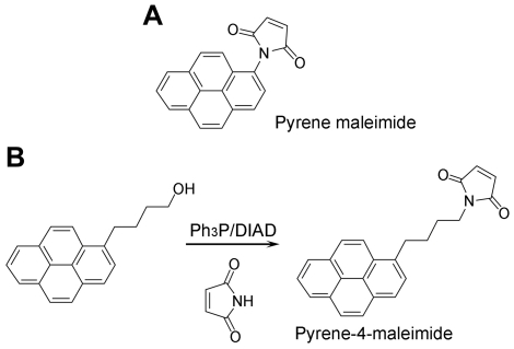 Schematic representation of the <t>pyrene-4-maleimide</t> synthesis and structure. A. Pyrene maleimide structure. B. Pyrene-4-maleimide synthesis route and structure. Ph 3 P: triphenylphosphine; DIAD: diisopropyl azodicarboxylate.