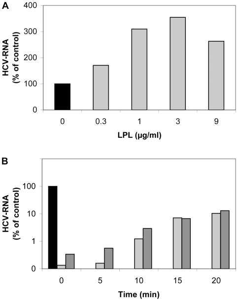 LPL affects HCV attachment and early stages of the virus cell cycle. (A) Effect of LPL on virus attachment to Huh7.5 cells. Huh7.5 cells were pre-incubated with various concentrations of LPL (1–9 µg/ml) for 30 min at 4°C. An aliquot of cell culture supernatant containing JFH-1 was incubated with LPL-pretreated Huh7.5 cells for 30 min at 4°C. The cells were washed and the RNA associated with them was extracted. HCV RNA was quantified by RT-qPCR. (B) Effect of LPL on early steps of HCV infection. JFH-1 was first adsorbed onto Huh7.5 cells by incubation for 45 min at 4°C. Cells were washed with cold medium to remove any unbound virus. Complete medium, warmed to 37°C, was then added and incubated with the cells at 37°C. LPL was added to a concentration of 1 µg/ml at various time points (0, 5, 10, 15 or 20 min) after the transfer of cells to 37°C, with or without the addition of 50 µg/ml THL to block its enzymatic activity. Cells were grown for 24 h. RNA was then extracted and HCV RNA was quantified by RT-qPCR. Results are expressed as a percent of RNA as compared with control cells infected in the absence of LPL.