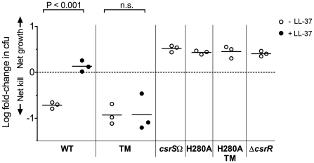 LL-37 signaling depends on a functional CsrS to induce GAS resistance to opsonophagocytic killing. Wild type strain 854 (WT), isogenic csrS mutants 854 csrS TM (TM), 854 csrS Ω ( csrS Ω), 854 H280A (H280A), and 854 H280A,TM (H280A TM), and isogenic csrR deletion mutant 854Δ csrR (Δ csrR ) were grown in the absence (open symbols) or presence (filled symbols) of 100 nM LL-37. Bacteria were then mixed with human peripheral blood leukocytes for 1 h in the presence of 10% human serum as complement source. Values represent the log of mean fold-change in cfu. Each symbol represents a single experiment performed in duplicate. When exposed to LL-37, wild type 854 showed a significant increase in resistance to phagocytic killing compared to untreated bacteria (P
