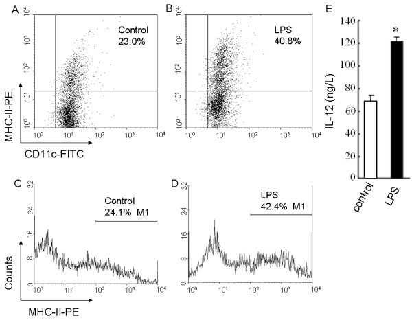 MHC-II expression and IL-12 production of immature and mature BMDCs . (A-D) Flow cytometry was used to detect CD11c and MHC-II molecule expression on the surface of the immature BMDCs treated with 10.0 μg/L of rmGM-CSF plus 10.0 μg/L of rmIL-4 as the control (A, C) or the mature BMDCs stimulated with 1.0 mg/L of LPS (B, D), which was displayed respectively by the scattered plots (A, B) and the single parameter diagrams (C, D). (E) The level of IL-12 secreted by the immature BMDCs or the mature BMDCs was measured by ELISA. * P