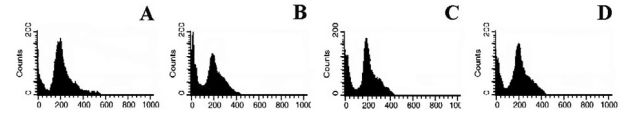 Western blot analysis of protein levels of p53 and Bax. Actin, used as the internal control, was detected at the position corresponding to a molecular weight of 46 kDa. * Represents p