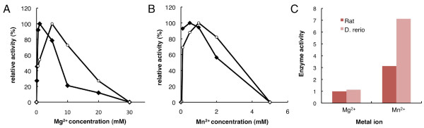Comparative analysis of metal ion activation for pol β of Danio <t>rerio</t> and rat . Dependence on the Mg 2+ (A) or Mn 2+ (B) concentration of the pol β activity of Danio rerio (closed lozenge) and rat (open circle) were assayed in 0-30 mM Mg 2+ and 0-5 mM Mn 2+ . Comparison of the activity of D. rerio and rat pol β by Mg 2+ and Mn 2+ was performed at 1 mM MgCl 2 and at 0.5 mM MnCl 2 (C). The activity measured by the amount of incorporated <t>dTTP.</t> Each activity was normalized by the activity of rat pol β in the presence of Mg 2+ .