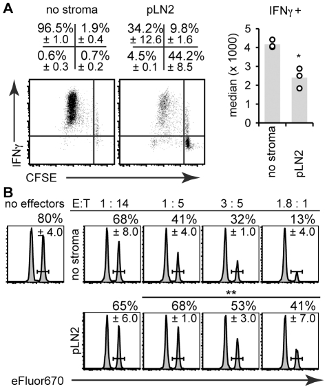 CD8 +  T cells primed in presence of TRC still produce IFNγ and kill target cells. The T cell activation assay (see legend of   Fig. 1 ) was performed without stroma ('no stroma') or in presence of the pLN2 TRC line for 4 days followed by flow cytometric analysis of OT-I T cell effector function. ( A ) Dot plots (left) show intracellular IFN γ  deposition versus CFSE dilution in OT-I T cells after  in vitro  re-stimulation with 1 µM SIINFEKL peptide in presence of brefeldin A. The right panel shows the median fluorescence intensity of IFN γ  expression in OT-I T cells. ( B ) The cytotoxic capacity of OT-I T cells was assessed by co-incubating OT-I T cells (=effector cells, E) from the T cell activation assay in the indicated E∶T ratios with SIINFEKL-pulsed-eFluor670 high -labeled splenocytes (=target cells, T) mixed 1∶1 with unpulsed-eFluor670 low -labeled splenocytes (=internal control). After overnight culture the percentage of eFluor670 high  versus eFluor670 low  splenocytes was analyzed and plotted as histograms. Indicated as percentage is the survival index for the target cells, as based on the ratio of peptide-pulsed eFluor670 high  relative to unpulsed eFluor670 low  cells (± standard deviation). ( A, B ): n=3, representative of 3 independent experiments. *  P