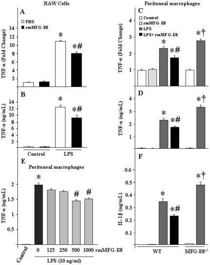 Effect of rmMFG-E8 on TNF-α production by LPS treated macrophages. (A, B) RAW264.7 cells (1×10 6 cells) and (C, D) peritoneal macrophages from WT and MFG-E8 −/− mice (0.5×10 6 cells) were plated in 24-well cell culture plates. After pre-incubation with rmMFG-E8 (500 ng/mL) for 2 h, the cells were then stimulated by LPS (10 ng/mL) for 2 h and the expression of TNF-α mRNA (A, C) was checked by real-time PCR. To assess the protein levels of TNF-α (B, D), RAW264.7 cells and mouse peritoneal macrophages were stimulated with LPS for 4 and 24 h, respectively and then ELISA was performed from the culture supernatants. (E) Dose-dependent effects of rmMFG-E8 for inhibiting the LPS-induced TNF-α production in murine peritoneal macrophages (0.5×10 6 cells) cultured in 24-well cell culture plates. (F) Peritoneal macrophages from WT and MFG-E8 −/− mice (0.5×10 6 cells) were plated in 24-well cell culture plates. After pre-incubation with rmMFG-E8 (500 ng/mL) for 2 h, the cells were stimulated by LPS for 24 h, followed by the measurement of IL-1β by ELISA. Data are expressed as means ± SE (n = 3 independent experiments) and compared by one-way ANOVA and SNK method: * P