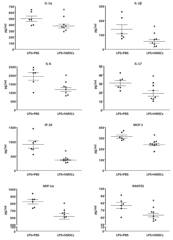 Proinflammatory cytokine and chemokine expression is decreased by hMSC administration . Twenty-four hours after LPS exposure, IL-1β, IL-6, IL-17, IP-10, MCP-1, MIP-1α and RANTES levels were measured by multiplex immunoassay in BAL fluid. Data are expressed as mean ± SEM (n = 6 per group). * P