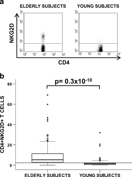CD4+ NKG2D+ T cells in peripheral blood from young and elderly individuals. ( a ) Representative dot plots showing the frequency of NKG2D expression in CD4+ T cells in elderly and young individuals. ( b ) Percentages of CD4+ T cells expressing NKG2D in a group of 100 elderly subjects compared with a group of 50 young subjects. Whole blood was stained with CD45-FITC/NKG2D-PE/CD3-PerCP/CD4-APC and 10 5  cells were acquired in each experiment. Frequencies of NKG2D+ cells in gated CD45+ CD3+ CD4+ lymphocytes were analyzed. Outlier values are represented by circles and extreme values by stars, and were calculated by adding 1.5 and 3 times the IR to the 75th percentile, respectively. The horizontal dotted line illustrates the 75th percentile in young donors (2.3%). The non-parametric Mann-Whitney U method was used to compare frequencies between groups