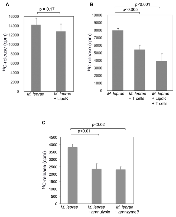 Reduction in the viability of M. leprae in DCs after co-culture with T cells and LipoK stimulation. ( A ) DCs were infected with M. leprae and stimulated with LipoK, 2 days later, cells were collected and the viability of M. leprae in DCs was measured by the radiorespirometric assay (metabolic CO 2 release) as described in Materials and Methods . In brief, 14 C labeled palmitic acid was added to the lysates of DCs and cultured at 33°C. After 7 days of culture, the amount of 14 CO 2 evolved was measured using a Packard 1500 TRI-CARB liquid scintillation analyzer. ( B ) DCs were infected with M. leprae as in A , and co-cultured with T cells. Six days after the co-culture, DCs were lysed, and the viability of M. leprae was determined by the radiorespirometric assay. ( C ) M. leprae at a concentration of 1×10 7 /well/200 µl in Middlebrook 7H9 media was incubated with granulysin or granzyme B for a period of 3 days at 33°C, and the viability determined as described in A . Unpaired Student's t test was used to find the statistical significance of the two sets of data. Representative data of three separate experiments is shown.