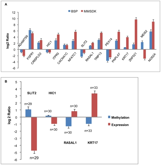 Validation results of BSP for DNA methylation and RT-qPCR for gene expression. A. Validation results of MMSDK with BSP. To compare the BSP-Sanger sequencing data and deep sequencing MMSDK data, the MluI loci that were determined to be differentially methylated on average by deep sequencing were validated using BSP. The height of the columns represents the log2-transformed average fold change (tumor/normal) in methylation level across the 9 patients. B. BSP and RT-qPCR results for four cancer-associated genes examined in 33 bladder cancer patients. The methylation levels of promoters of four selected genes (SLIT2, HIC1, RASRAl1, KRT17) and their expression level were evaluated in a panel of 33 samples. The height of the columns represents the log2 average fold change (tumor/normal) in methylation level (blue) or expression level (red) across all patients. The bars represent the standard error. The number of samples (n) used in the validation assay is indicated beside each standard error bar.