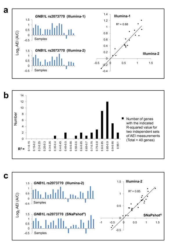 Reproducibility of AEI assays ( GNB1L ) . (a) [Left] Comparison of the results of independent measurements of GNB1L AEI. (Each assay was performed independently, from the isolation of brain RNA through DNA sequencing.); [Right] Regression analysis. (b) Histogram of the distribution of r 2 values obtained in regression analysis of independent AEI assays for 40 candidate genes for which replica assays were carried out. (All data are shown). (c) [Left] Comparison of the results of independent measurements of GNB1L AEI using PCR/DNA sequencing-based (top) and PCR/SNaPShot ® -based (bottom) assays. [Right] Regression analysis. [Note: the Illumina-2 AEI ratios in (a) were matched with those obtained in the Illumina-1 AEI assay, which contained fewer samples. The full set of data from the Illumina-2 assay is shown in (c).]