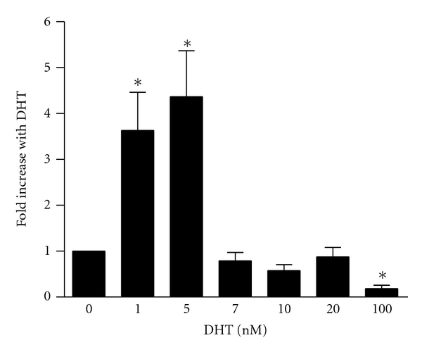 Endogenous ZEB1 mRNA expression is induced by DHT . PC-3/AR cells were treated with vehicle (0 nM) or increasing amounts of DHT as indicated. Twenty-four hours later, RNA was harvested and subjected to qPCR using the ZEB1 and RPL32 primers listed in Table 1 . ZEB1 mRNA levels were normalized to RPL32 and then plotted relative to the no DHT control. This experiment was repeated 6 times in triplicate. The errors bars represent the standard deviation from the mean average of all experiments. * P