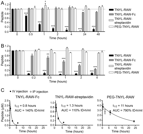 Modified forms of TNYL-RAW have increased stability in cell culture medium and in the mouse circulation. (A, B) Biotinylated, streptavidin-bound, fused to Fc and PEGylated TNYL-RAW were incubated in medium conditioned by PC3 prostate cancer cells (A) or mouse serum (B). Functional peptide remaining at the indicated times was captured in ELISA plates and quantified. Biotinylated TNYL-RAW was captured on ELISA wells pre-coated with EphB4 Fc and detected with Streptavidin-HRP. TNYL-RAW-streptavidin was captured on wells pre-coated with EphB4 Fc and detected with an anti-streptavidin antibody coupled to HRP. TNYL-RAW-Fc was captured on wells coated with an anti-Fc antibody and detected with EphB4 AP. PEG-TNYL-RAW was captured on wells coated with EphB4 Fc and detected with anti-PEG antibody followed by a secondary antibody conjugated to HRP. Normalized averages from 6–9 measurements ± SE are shown. Peptide amounts at different time points were compared to those at time 0 by one-way ANOVA and Dunnett's post test. *P