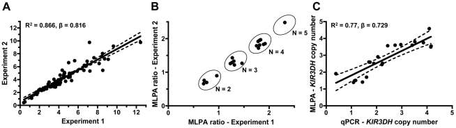 Intra-run reproducibility in KIR3DH copy number determination and validation of quantitative real-time PCR estimates of KIR3DH copy numbers by MLPA (multiplex ligation-dependent probe amplification). (A) KIR3DH copy numbers were determined using triplicates of each DNA sample from 77 rhesus monkeys in two separate experiments to validate intra-experiment reproducibility (R 2 = 0.87, β = 0.816). (B) Comparison of signal ratios of two MLPA experiments. Pairs of ratios (20 samples) cluster around groups corresponding to KIR3DH copy numbers of 2, 3, 4 and 5. (C) Relationship between KIR3DH copy numbers determined by qPCR and MLPA (R 2 = 0.77, β = 0.729). The 95% confidence interval is shown by dashed lines.