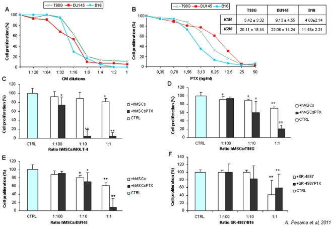 Primed hMSCsPTX and SR4987PTX inhibit proliferation of different TC lines in vitro. In (A) is shown the kinetics of growth inhibition induced by serial dilutions of hMSCsPTX-CM on T98G, DU145 and of SR4987PTX-CM on B16 which was compared with activity of different concentrations of PTX on the same TCs (B). The CM addition produced a strong anti-proliferative effect on all TCs tested in a dose dependent manner: 1∶16 and 1∶4 dilutions IC 50 and IC 90 growth inhibition on all TC lines respectively, corresponding to the PTX concentrations necessary to obtain IC 50 and IC 90 on the different tumor cells as reported in small table insert in (B). Inhibition of TCs proliferation was also obtained by a direct co-culture assay. Primed hMSCsPTX mixed, at different ratios (1∶100–1∶10–1∶1 MSCs/TCs), with MOLT-4 (C), T98G (D), DU145 (E) showed dose dependent capacity to block TCs proliferation evaluated in a MTT test at 7 days expressed as percent of OD measured for TCs cultured in control medium alone (CTR) or in presence of not primed hMSCs. SR4987PTX behaved like hMSCsPTX. However, even not primed SR4987 per se showed some anti-proliferative capacity on B16 melanoma at 1∶1 ratio (F). The histograms report the mean ± SD of three experiments with the statistical significance as follows: * ( p